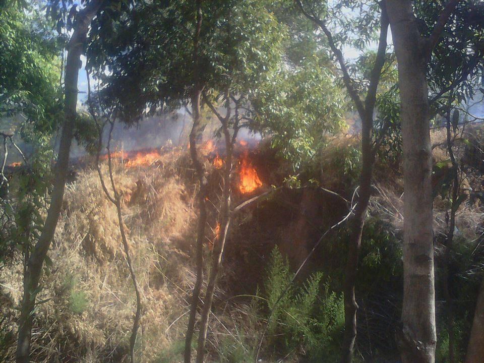 Incendiários atacam novamente. Desta vez foi na Vila Isabel.